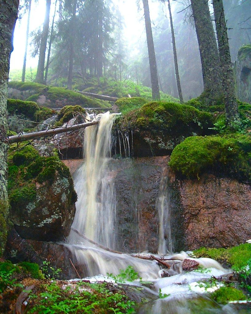 Rödbergsbäcken i Kindla naturresevat
